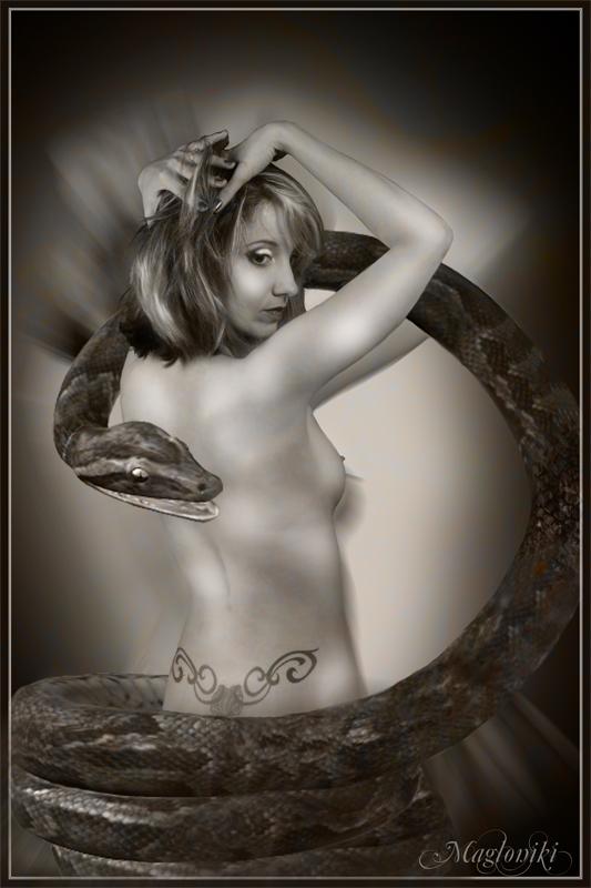 http://magali.leroy3.free.fr/tmnfmod/photopourmonsite/pourJacques/DSC00189%20bisr%e9duite.jpg